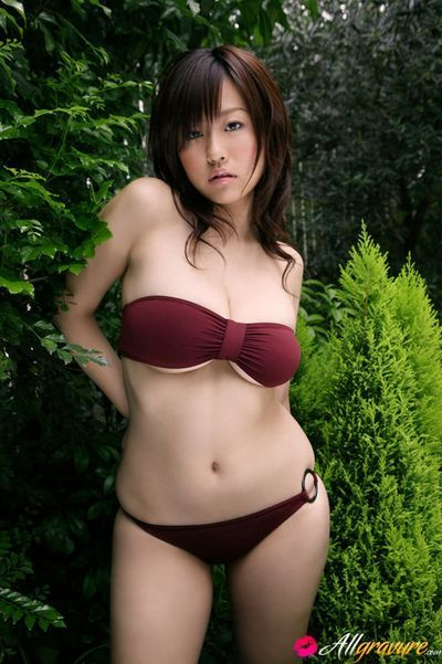 All Gravure torrent